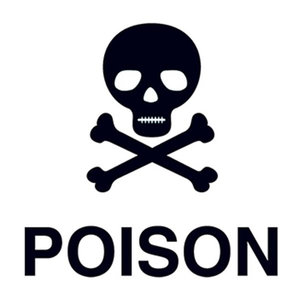 Poison Skull Temporary Tattoo - Poison Skull Temporary Tattoo