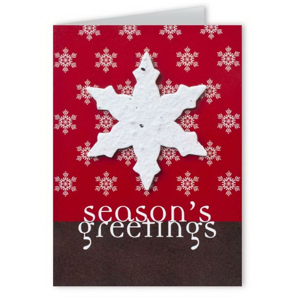Season's Greetings Greeting Card with Snowflake