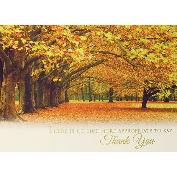 Autumn in the Park Greeting Card - Autumn in the Park Greeting Card