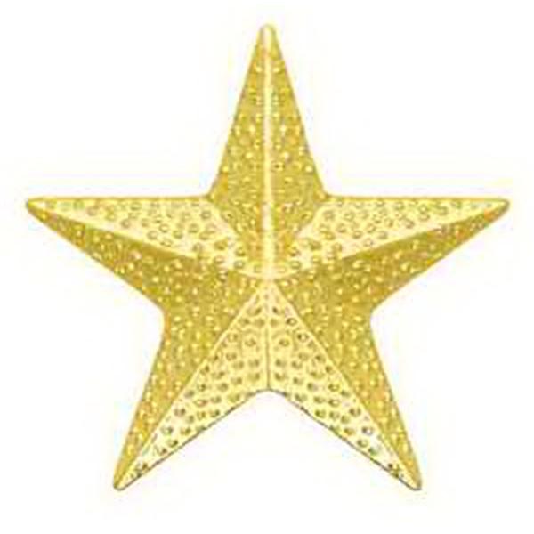 Chenille Pin STAR -
