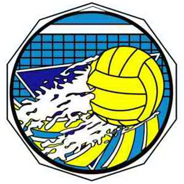 "2"" Decagon Color Medal Water Polo"
