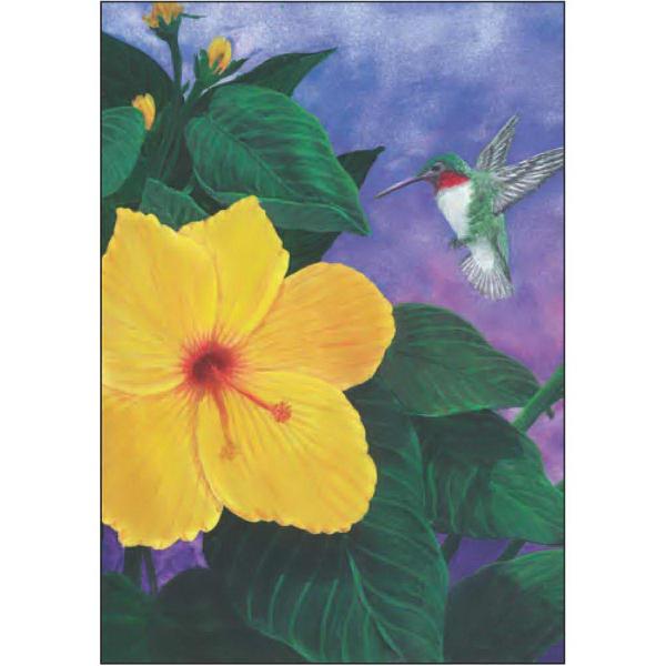 Hummingbird and Hibiscus