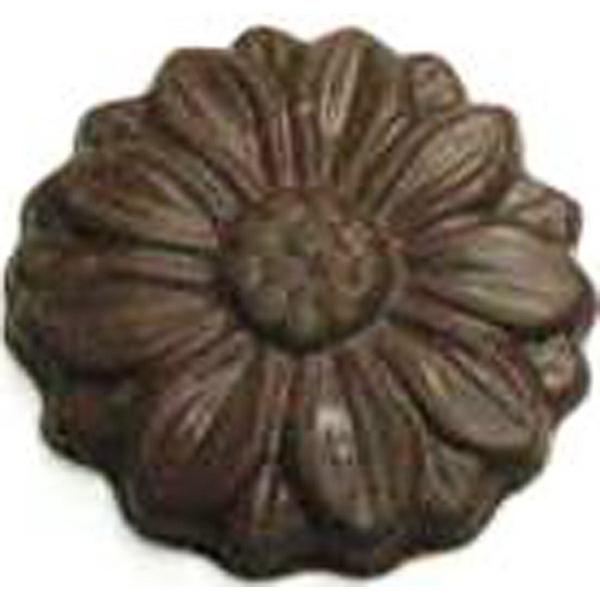 Chocolate Daisy Medium