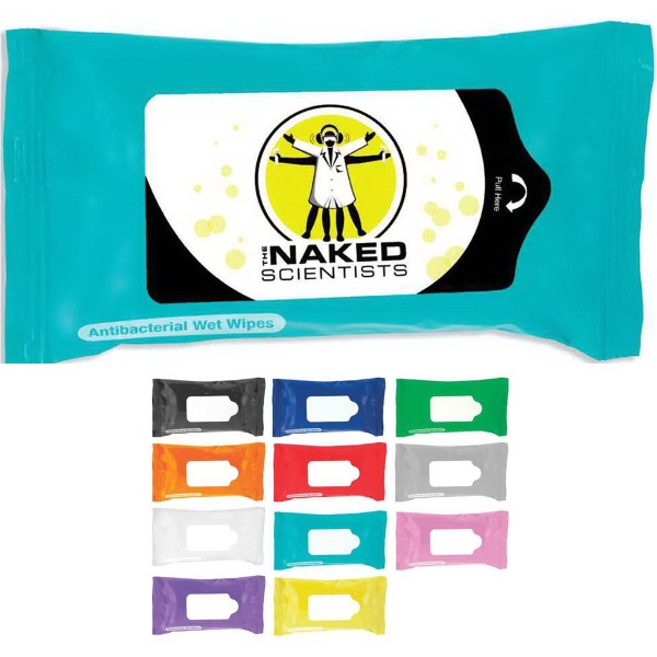 Tek-Wipes Antibacterial Wet Wipes in a Pouch