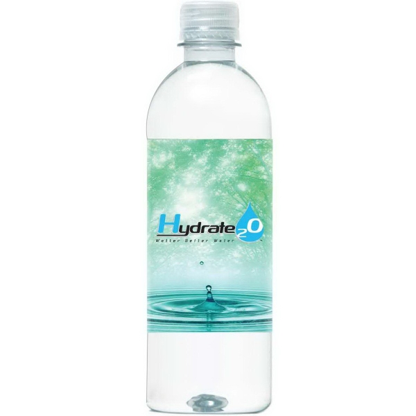 16.9 oz. Aquatek Bottled Water