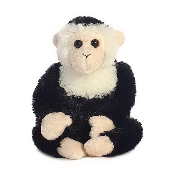 "8"" Capuchin Monkey"
