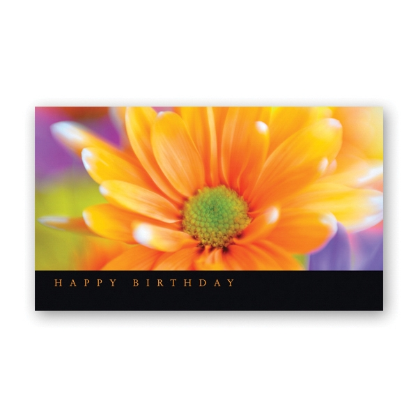 Delightful Daisy Birthday Card