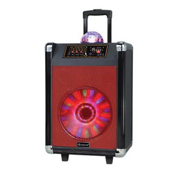 Portable Bluetooth DJ Speaker