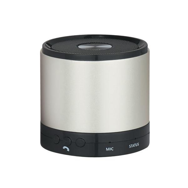 Round Speaker