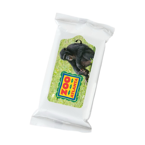 Insect Wipes - 10 Pack