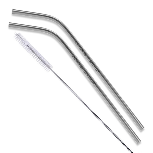 Silver Stainless Steel Straw qty 2