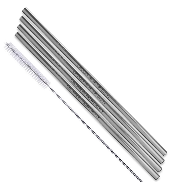 Silver Stainless Steel Straw qty 4
