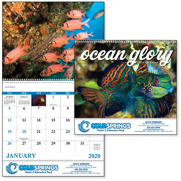 Spiral Ocean Glory Lifestyle 2020 Appointment Calendar