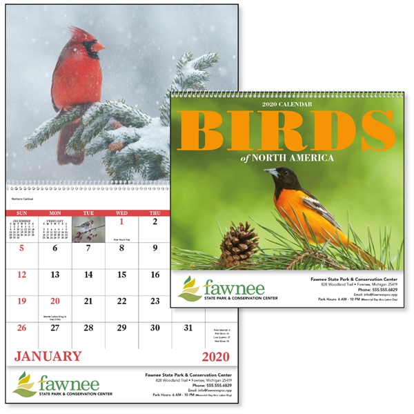 Spiral Birds of North America 2020 Appointment Calendar