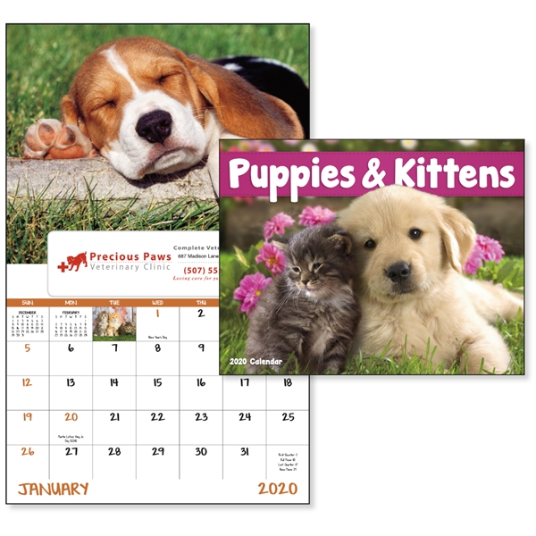 Window Puppies & Kittens Lifestyle 2020 Appointment Calendar