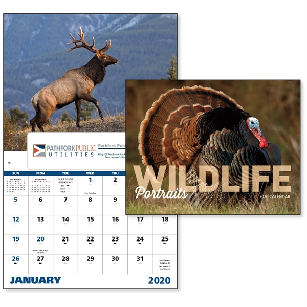 Window Wildlife Portraits 2020 Appointment Calendar