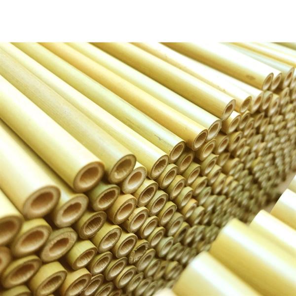 Set of 12 Bamboo Straws with Reusable Brush and Gift Bag