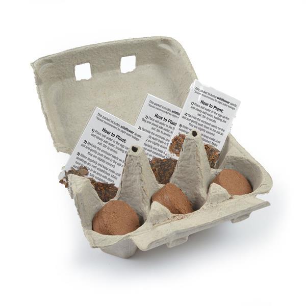 Holiday Egg Carton Garden