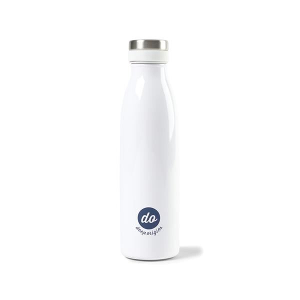 Aviana™ Palmer Double Wall Stainless Bottle - 17 Oz.