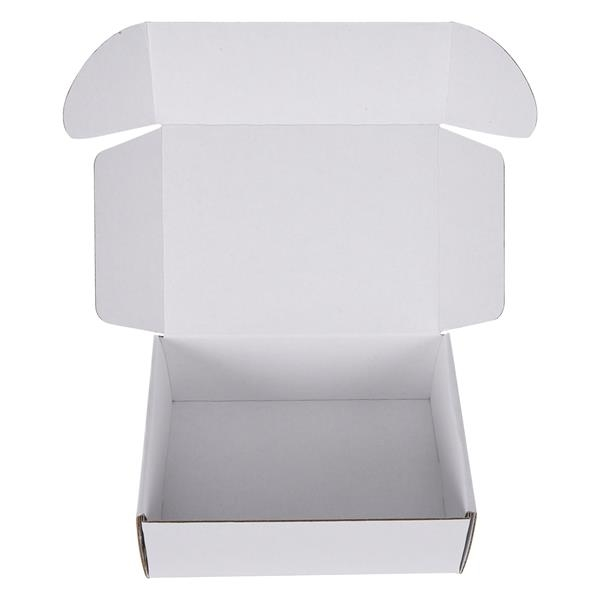 8X6 Full Color Mailer Box