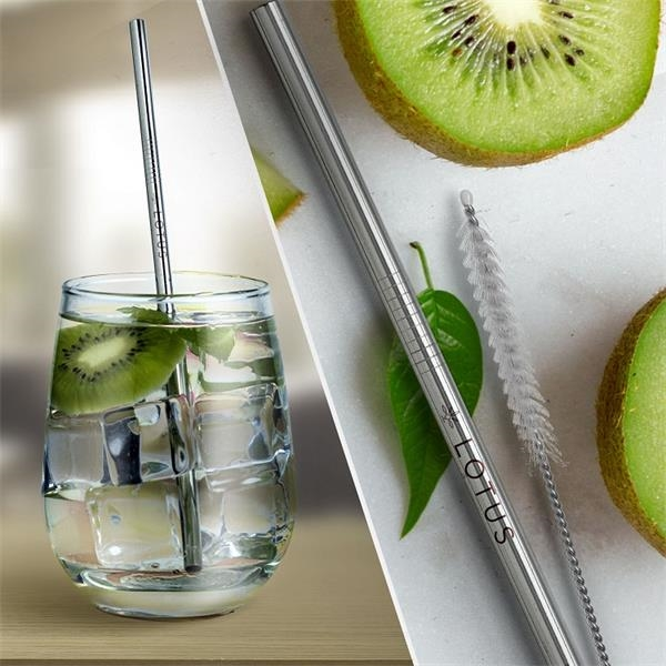 Silver Stainless Steel Straw qty 1