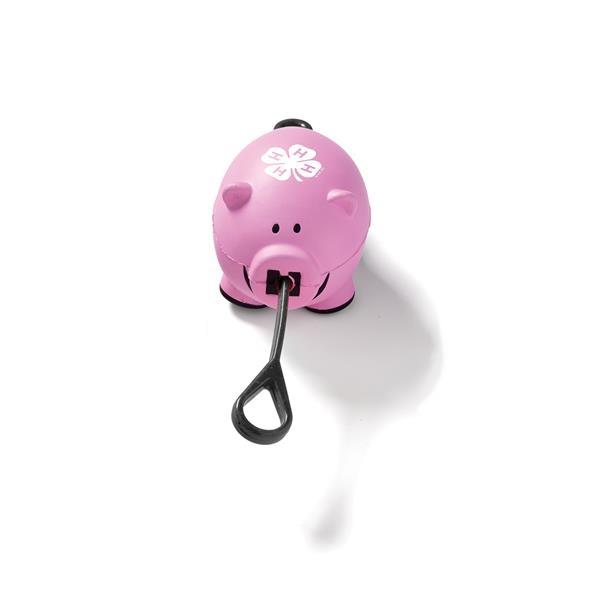 Slingshot Pig Toy