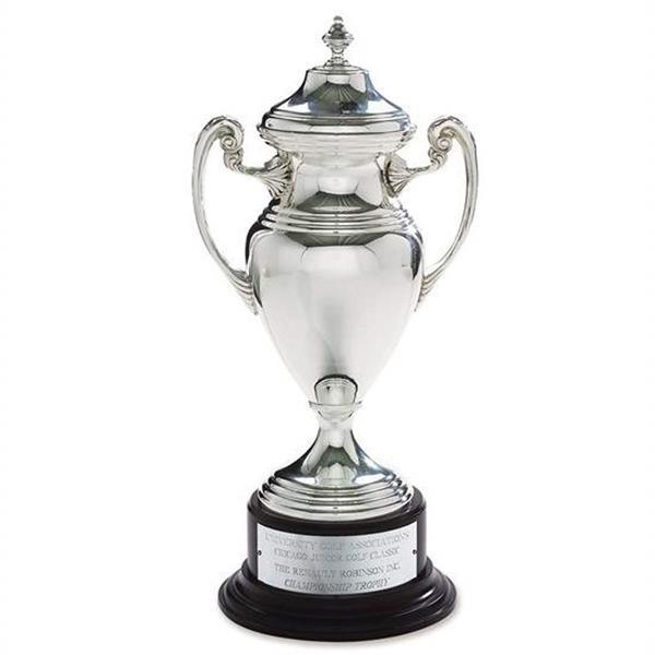 Silver Cup Award