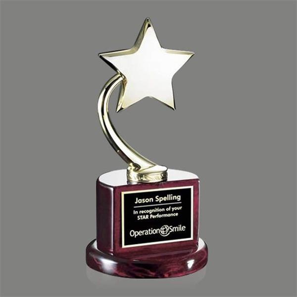 Evandale Star Award