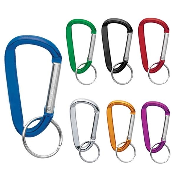 Buget Carabiner Key Chain