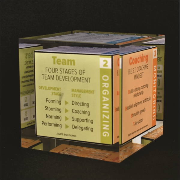 Cube Shaped Award