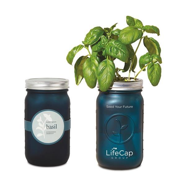 Modern Sprout® Indoor Herb Garden Kit