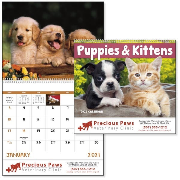 Spiral Puppies & Kittens Lifestyle 2021 Appointment Calendar