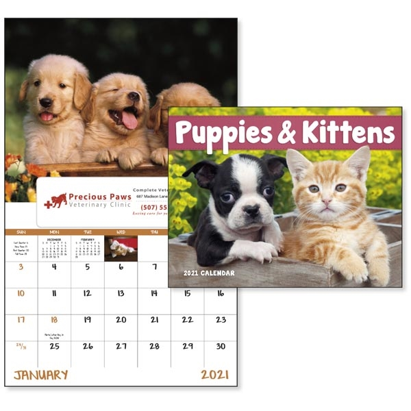 Window Puppies & Kittens Lifestyle 2021 Appointment Calendar