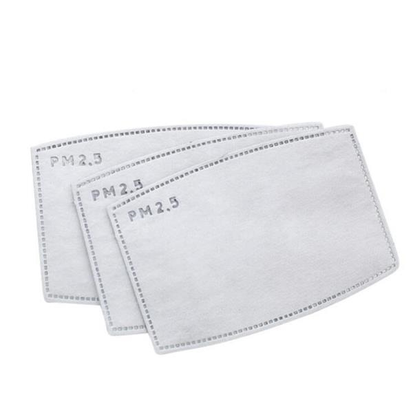 PM2.5 Replacement Filter