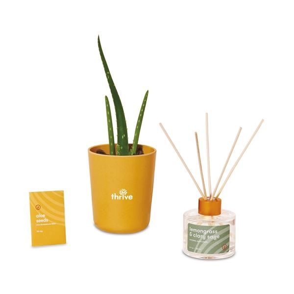 Modern Sprout® Find Balance Take Care Kit - Aloe