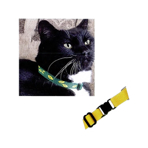 Classic - Custom Woven Classic Webbing Kitty Pet Collar With Breakaway Collar Photo