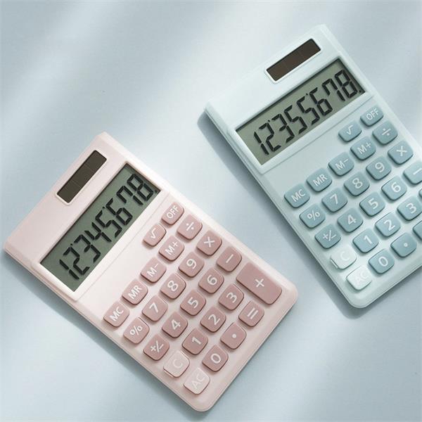 Mini Student Calculator