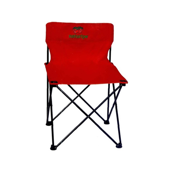 Folding Chair With Carry Case Photo