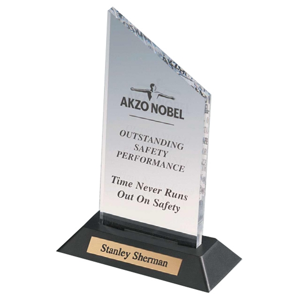 Professional Gallery - Clear Acrylic Award On A Black Weighted Base With Personalized Plate Photo