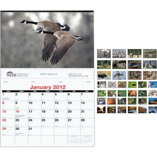 Single Image Monthly Wall Calendar Photo