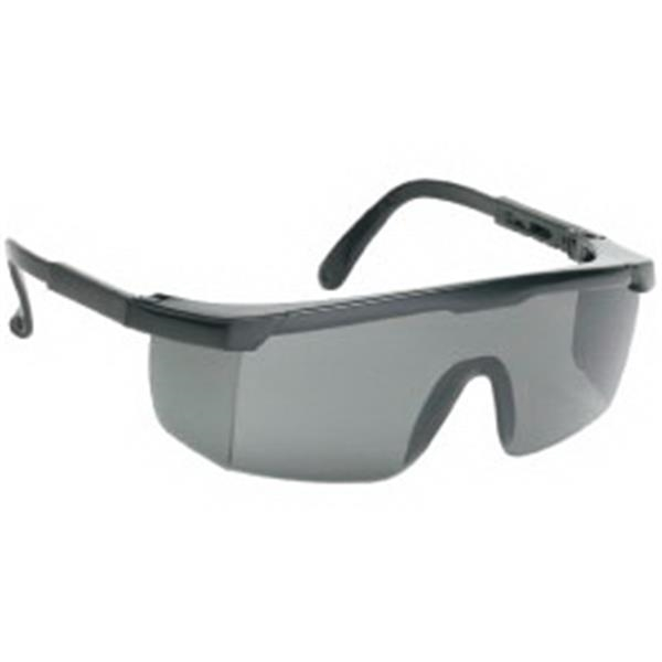 Gray Lens - Large Single-lens Safety Glasses Photo