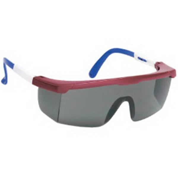 Provizgard - Gray Lens With Red-white-blue Frame - Large Single-lens Safety Glasses With Polycarbonate Fame Photo