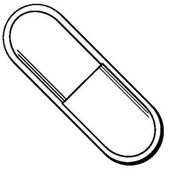 Pill Shape Magnet