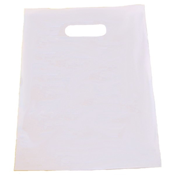 "Patch Handle White Bag, 9"" X 12"" Photo"