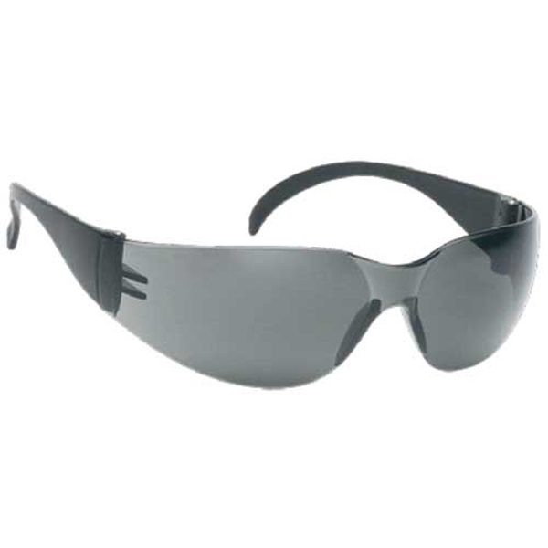 Gray Lens - Lightweight Safety Glass Photo