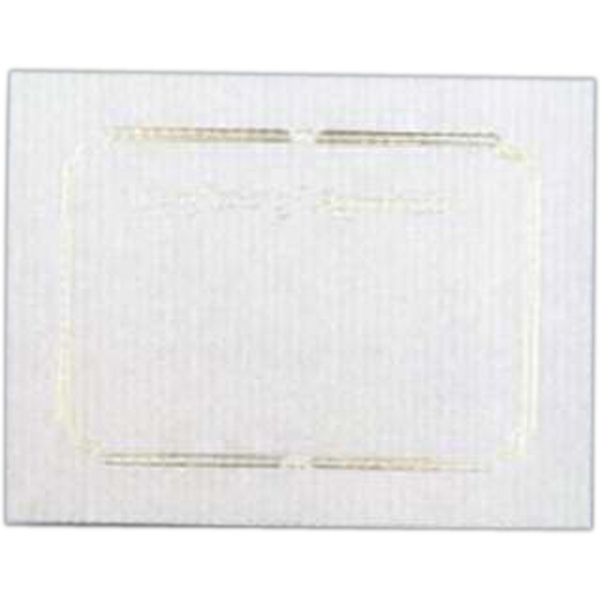 "Appreciation - Blank Stock Gold Foil Embossed Certificate With Border, 8 1/2"" X 11"" Photo"