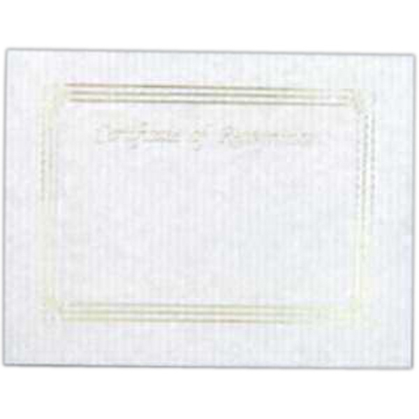 "Recognition - Blank Stock Gold Foil Embossed Certificate With Border, 8 1/2"" X 11"" Photo"