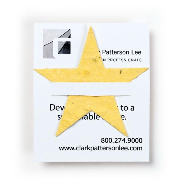 Star Lil' Bloomer Mini Gift Card