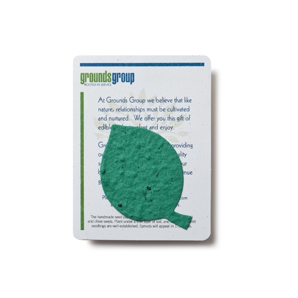 Beech Leaf Mini Gift Pack With Seed Paper