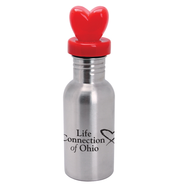 Nichebottle (tm) - Stainless Steel Bottle With Heart Lid, 17 Oz Photo